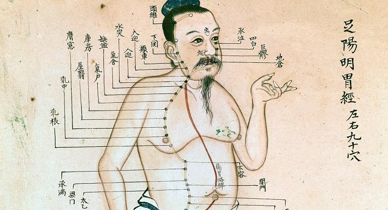 Corso di Medicina Cinese a Signa